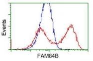 GTX84527 - FAM84B