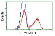 GTX84561 - EPM2AIP1