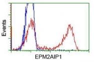 GTX84564 - EPM2AIP1