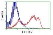 GTX84567 - Epoxide hydrolase 2 / EPHX2