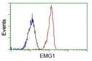 GTX84576 - EMG1 / C2F
