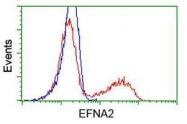 GTX84591 - Ephrin-A2