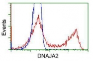 GTX84611 - DNAJA2