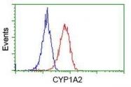 GTX84641 - CYP1A2