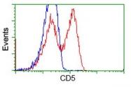 GTX84708 - CD5