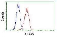 GTX84722 - CD36