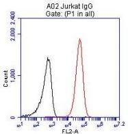 GTX84724 - CD2