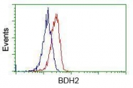 GTX84833 - BDH2