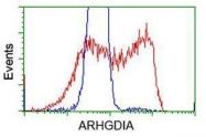 GTX84859 - ARHGDIA / GDIA1