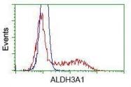 GTX84889 - ALDH3
