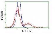 GTX84890 - ALDH2
