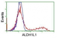 GTX84891 - ALDH1L1 / FTHFD