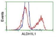 GTX84894 - ALDH1L1 / FTHFD