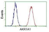GTX84913 - AKR1A1 / ALDR1