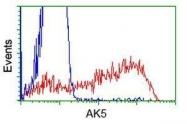 GTX84924 - Adenylate kinase 5 (AK5)