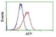 GTX84952 - Alpha-fetoprotein / AFP