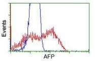 GTX84953 - Alpha-fetoprotein / AFP