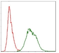 Fig. 3: Flow cytometry analysis of Ubiquitin in HeLa cells using monoclonal anti-Ubiquitin antibody Cat.-No. AM06722PU-N (green) and negative control (red).