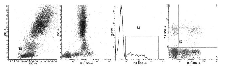 Human Lambda Light Chain antibody | acris-antibodies com